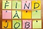 15.8% معدل البطالة في المملكة