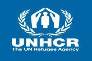 11 ألف أسرة سورية لاجئة تنتظرالمساعدات النقدية من''المفوضية''